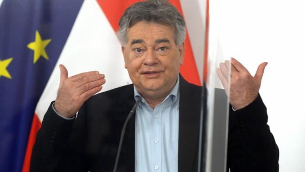 Vizekanzler Werner Kogler (Grüne) (Bild: APA/HERBERT PFARRHOFER)