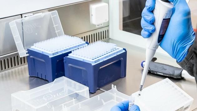 Laufend wird neues Proben-Material zur Sequenzierung nach Wien geschickt. (Bild: EXPA/ Johann Groder)