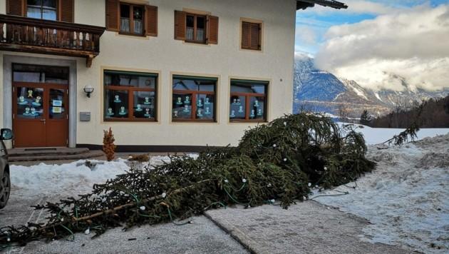 """Eine Szene der Verwüstung hinterließen die """"Holzfäller"""" in der Nacht auf Sonntag für die Gemeindemitarbeiter. (Bild: ZOOM.TIROL)"""