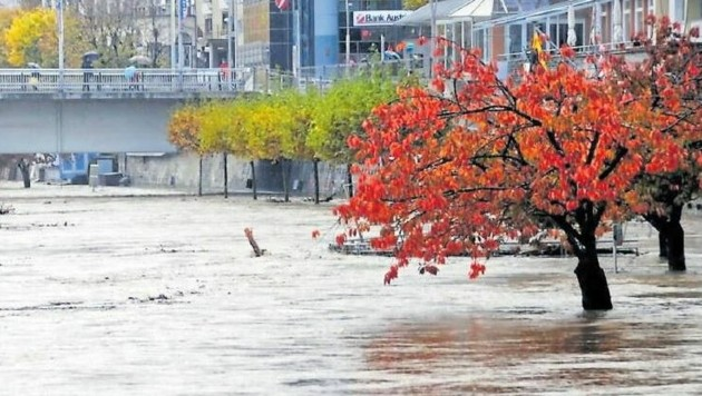 Nach heftigem Regen führte die Drau 2018 Hochwasser. (Bild: Robert Telsnig)