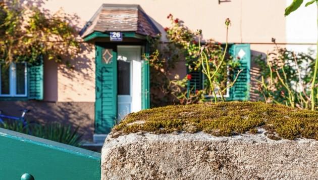 Ingeborg Bachmann: In diesem Haus in der Henselstraße in Klagenfurt verbrachte die große Schriftstellerin ihre Jugend (Bild: tinefoto.com   martin steinthaler)