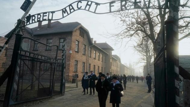 """""""Arbeit macht frei"""", lautet der zynische Spruch am Tor zum Stammlager des Konzentrationslager-Komplexes Auschwitz. Bis zu eineinhalb Millionen Menschen wurden in Auschwitz und Auschwitz-Birkenau ermordet. (Bild: JANEK SKARZYNSKI)"""