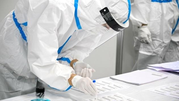 1556 Proben aus NÖ werden auf Virusmutationen gecheckt (Bild: SASCHA STEINBACH)