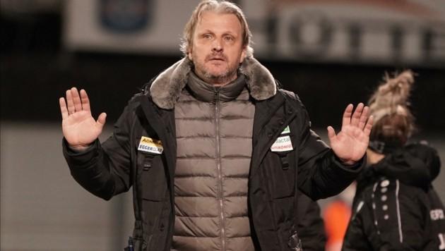 Hartberg-Trainer Markus Schopp (Bild: Pail Sepp)