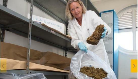 Bei einem Albaner stellte die Polizei 2019 insgesamt 56 Kilo Cannabis sicher. (Bild: LPD Salzburg)