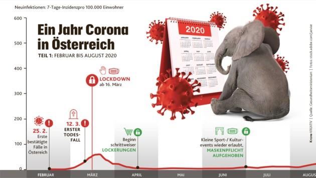 (Bild: Krone KREATIV, Quelle: Gesundheitsministerium, Fotos: stock.adobe.com/janvier )
