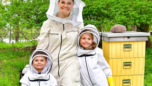 """Die Mini-Imker Prinz Oscar und Prinzessin Estelle mit ihrer Mama, Kronprinzessin Victoria von Schweden: """"Bienen sind so wichtig für die Artenvielfalt."""" (Bild: Jonas Ekströmer / TT News Agency / picturedesk.com)"""