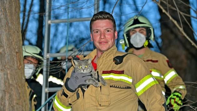 """Ein stolzer Feuerwehrmann mit Katze """"Finya"""". (Bild: zoom.tirol)"""