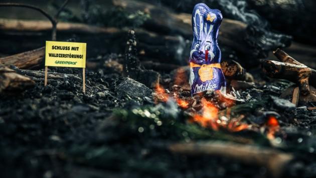 """Der Greenpeace-Report """"Süße Versprechen, bittere Realität"""" beschäftigte sich mit Milka-Schokolade und was diese mit der Zerstörung der Regenwälder und Menschenrechtsverletzungen entlang der Lieferkette zu tun hat. (Bild: Mitja Kobal/Greenpeace)"""