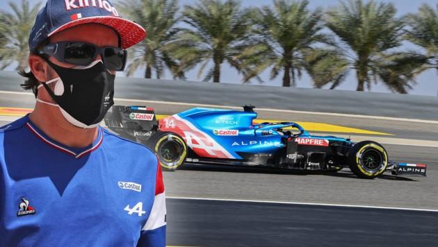 Fernando Alonso (Bild: AFP, krone.at-grafik)