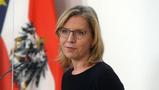 Vor mehr als einem Jahr wurde eine Resolution vom Landtag verabschiedet. Seither wartet man in Niederösterreich auf eine Antwort von Ministerin Gewessler. (Bild: APA/HERBERT PFARRHOFER)