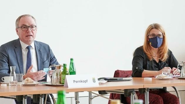 Stephan Pernkopf und Ulrike Königsberger-Ludwig rufen zum Testen auf (Bild: NLK Pfeiffer)