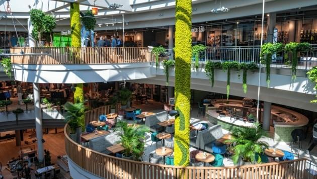 Mit dem Umbau ist auch eine Galerie mit Platz für ein Café entstanden. (Bild: LIEBL Daniel | zeitungsfoto.at)