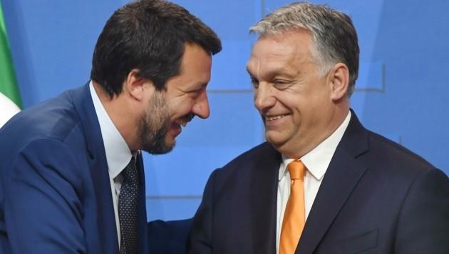 Ungarns Ministerpräsident Viktor Orbán mit dem italienischen Lega-Chef Matteo Salvini. (Bild: AFP)