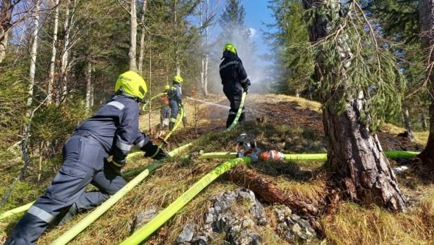 Steile Hänge mussten Feuerwehrleute in Kernhof bewältigen. (Bild: FF Kernhof/FF St. Aegyd)