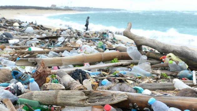 Der im Meer schwimmende und der an den Stränden angespülte Plastikmüll stimmt Greiner-Chef Axel Kühner nachdenklich. (Bild: Hung-Hsuan Chao / Greenpeace)