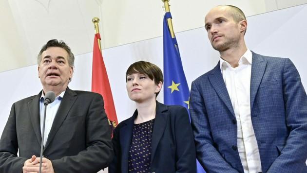 Werner Kogler, Sigrid Maurer und Josef Meichenitsch (Bild: APA/Hans Punz)