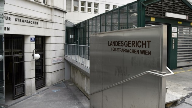 Der Akt wanderte bereits Wien und wieder retour (Bild: HANS PUNZ)