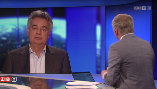 Vizekanzler Werner Kogler (Grüne) glaubt, dass die Regierung bis zum Ende der Legislaturperiode zusammenarbeiten wird. (Bild: Screenshot ORF)