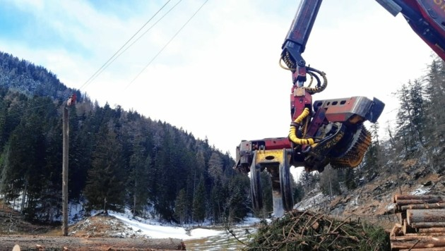 Holzbauern und Bundesforste versuchen derzeit, jeden Festmeter Holz in zugänglichen Wäldern zu retten. Der Rohstoff wird an heimische Firmen geliefert. (Bild: Peter Pirker)