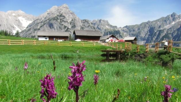 (Bild: Naturpark Karwendel/Sonntag)