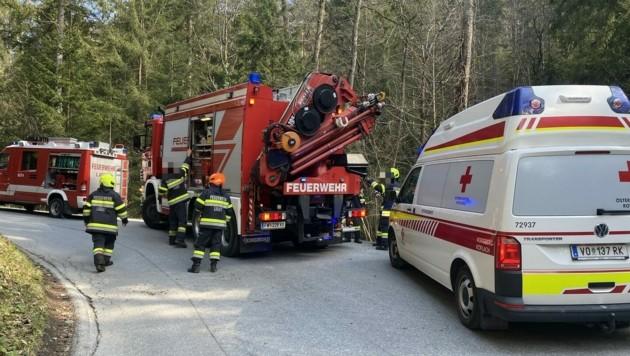 Forstunfall in Ligist (Bild: FF Ligist)