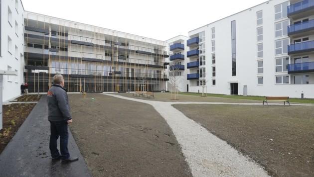 Nur wenige Innsbrucker Gemeinderäte zeigten Interesse an der neuen Wohnanlage Pradl 2. (Bild: Birbaumer Christof)