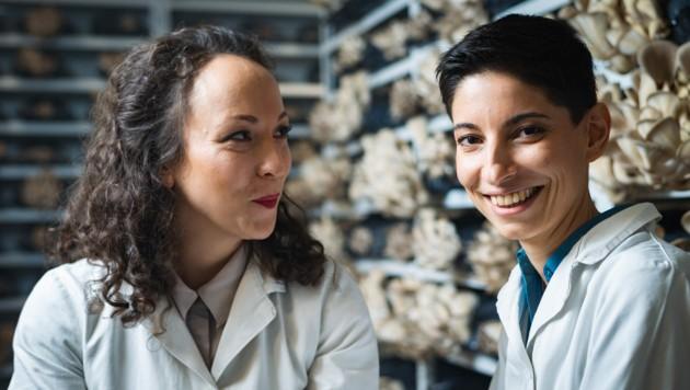 Jasmin Kabir und Mercedes Springer züchten erfolgreich Austernpilze. (Bild: Michael Langerwisch/Pilzkiste)