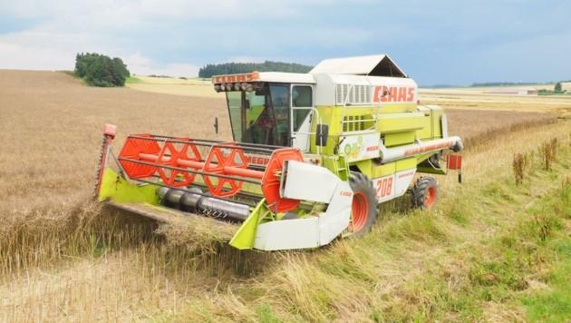 Das Internet kann viel, man will die Vorteile auch für Landwirte besser nutzbar machen. (Bild: Gabriele Moser)