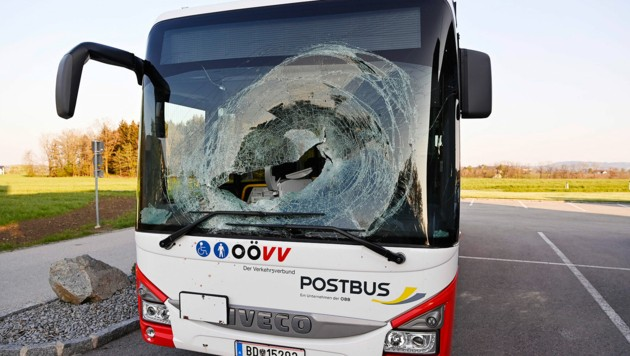 Der Rehbock wurde in Taiskirchen mitten durch die Frontscheibe geschleudert (Bild: Manfred Fesl-m.fesl@speed.at)