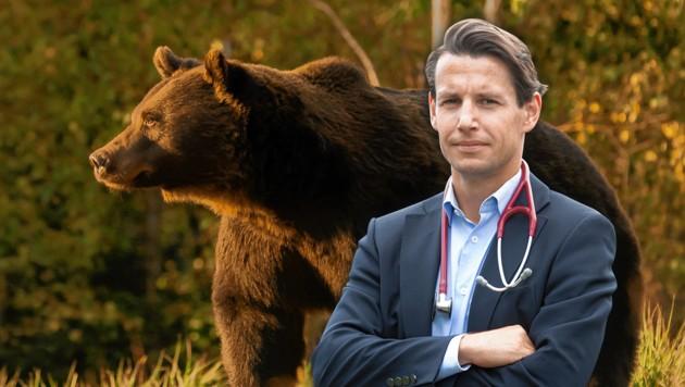 Dieser prächtige Braunbär wurde in Rumänien erschossen. Gegen den angeblichen Schützen Prinz Emanuel von und zu Liechtenstein gibt es dazu Vorwürfe. (Bild: Evelyn Hronek, Agent Green, Krone KREATIV)