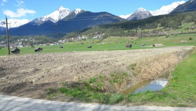 """Für Spaziergänger ist dieser """"Bodenaufbau"""" eine Umweltsünde. (Bild: Daum Hubert)"""