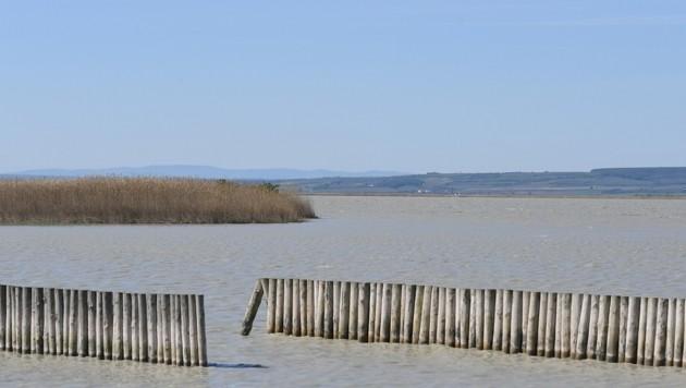 Der Wasserstand des Sees ist nach wie vor niedrig. Es wird auf den Herbst und Winter gehofft. (Bild: P. Huber)