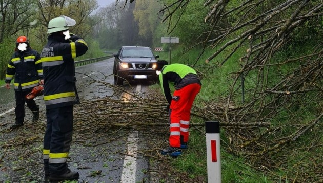 (Bild: Freiwillige Feuerwehr St. Filippen)