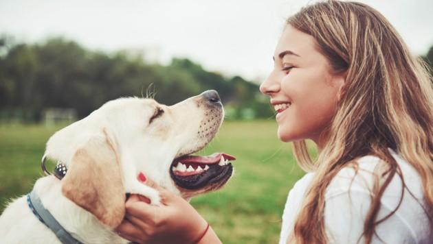 Die Lockdown-Phasen sorgten für einen regelrechten Boom bei Haustieren. (Bild: standret - stock.adobe.com)
