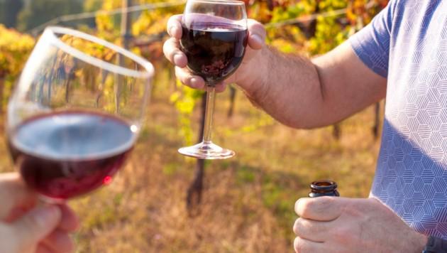 Italien protestiert gegen Pläne aus Brüssel, die Winzern künftig erlauben würden, Wein mit Wasser zu strecken. (Bild: ©Marina - stock.adobe.com)