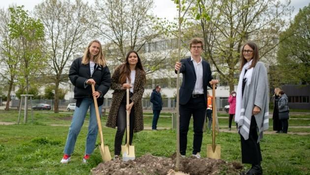 Schüler und Lehrer des BG/BRG Tulln unterstützen das Projekt (Bild: Imre Antal)