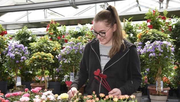 Juniorchefin Maria Moser hat viel zu tun in der Gärtnerei. (Bild: Holitzky Roland)