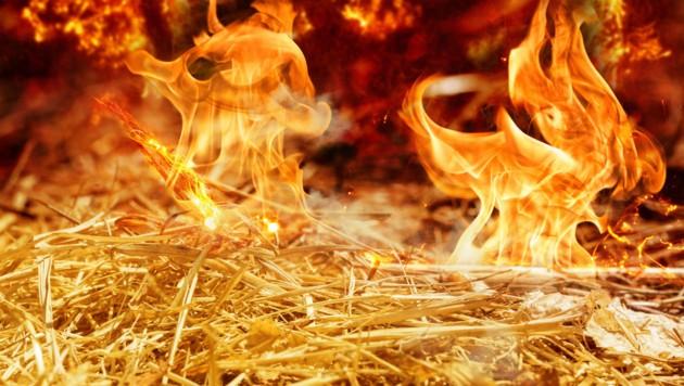 195 Tonnen Stroh verbrannten in dem ländlichen Gebiet unweit der Stadt Perm. (Bild: stock.adobe.com)