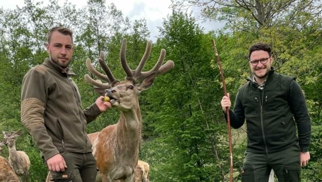 """Martin Möstl (links) und Florian Sattler begannen Ende 2020 mit der Zucht von ihrem """"Grazer Wild"""". (Bild: Grazer Wild)"""