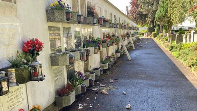 Urnenfriedhof in Graz (Bild: LDP Stmk)