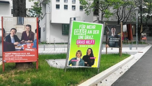 Plakate zieren derzeit den Campus der Uni Graz. Am Dienstag beginnt die Wahl. (Bild: Hannah Michaeler)