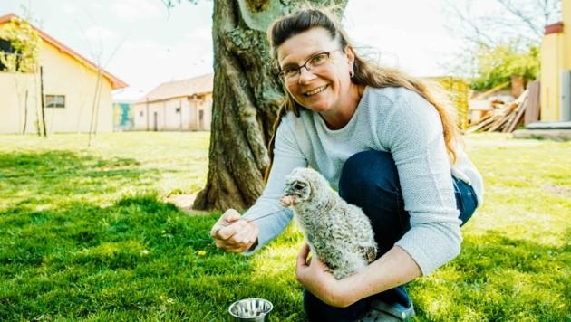 Tierärztin Claudia Herka mit einem Waldkauz-Baby. (Bild: fotofraller.at)