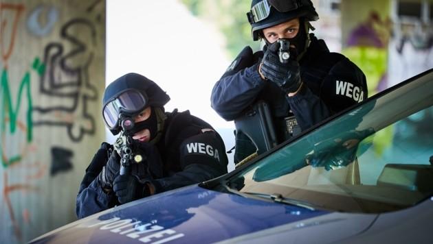 Mit den Sturmgewehren wird auch in St. Pölten trainiert (Symbolbild) (Bild: BMI/Tuma)