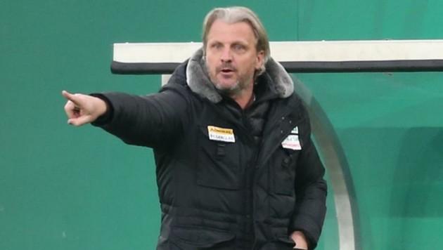 Hartberg-Trainer Markus Schopp (Bild: Urbantschitsch Mario)