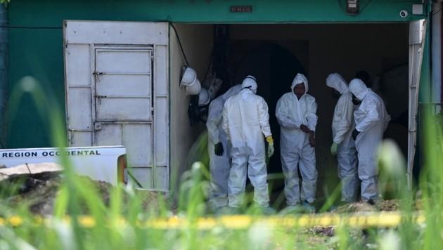 Forensiker untersuchen das Haus des ehemaligen Polizisten Hugo Ernesto Osorio, in dem die Überreste von mindestens 14 Mordopfern gefunden wurden. (Bild: AFP)