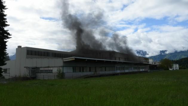In dieser Halle in Uznach (SG) geriet die 30 mal 30 Meter große Hanfplantage in Brand. (Bild: Kapo St. Gallen)