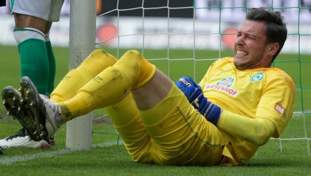 Jiri Pavlenka, hier im Dress von Werder Bremen (Bild: AFP)