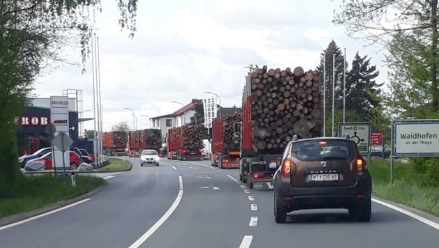 Holz-Lastwagen, so weit das Auge reicht. Immer schlimmer werden die Bilder aus dem Waldviertel: Hier fahren fünf voll beladene Holz-Lkw durch die Bezirksstadt Waidhofen an der Thaya. Viele sind an der Grenze ihrer Belastbarkeit. (Bild: zVg)