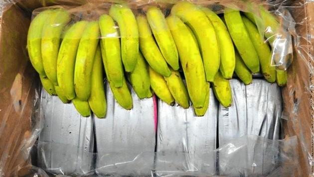 Eine Kokain-Lieferung in Bananenkisten brachte die Ermittlungen ins Rollen. (Bild: Landeskriminalamt Baden-Württemberg)